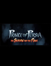 Prince of Persia: The Shadow and the Flame – Fakten