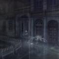RAIN_IMG_09