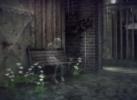 RAIN_IMG_14