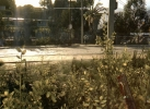 Dying Light_20150207221056