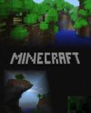 Minecraft – Fakten