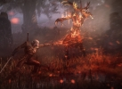 THE_WITCHER_3_IMG_11